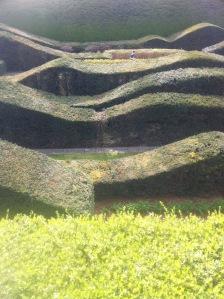 Wavy hedging