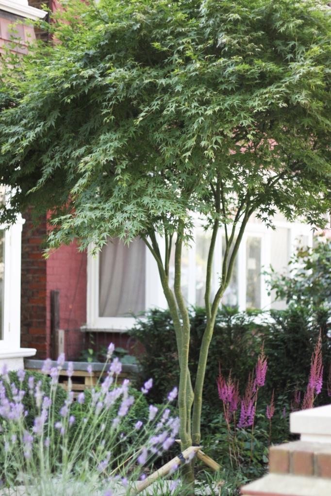 Wimbourne Gardens 7664922286
